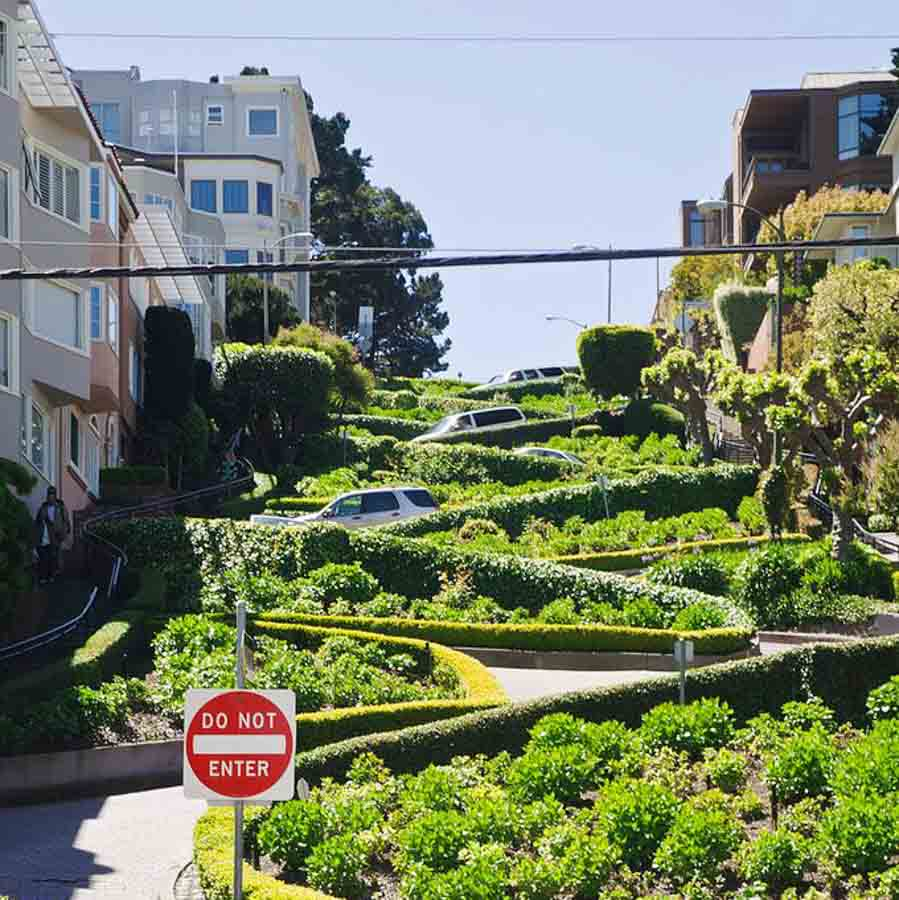 Check out Lombard street and walk down the crookest street in the USA
