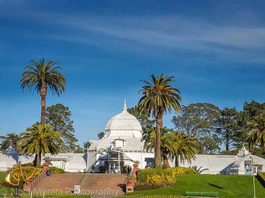 Enjoy the grassy areas around the Conservatory of flowers