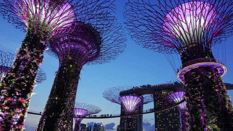 Gardens by the Bay – the best free thing to do in Singapore